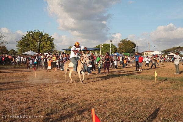 Winner - Richard Stephen on Faithful Ransom - Donkey Derby, Arima 2010