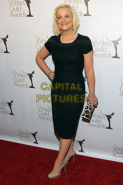 AMY POEHLER .The 2011 Writers Guild Awards held at Renaissance Hollywood Hotel,  Los Angeles, California, USA,.5th February 2011..WGA WGAs arrivals full length dress hand on hip beige shoes nude clutch bag leopard print animal black .CAP/ADM/TB.©Tommaso Boddi/AdMedia/Capital Pictures.
