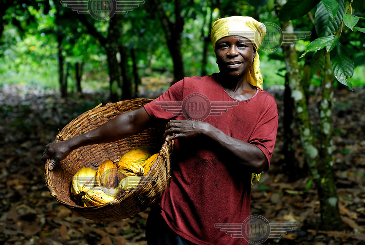 Kuapa Kokoo cocoa farmer Aminatu Kasim on her farm.  Kuapa Kokoo is a cocoa farmers' co-operative with 45,000 members spread across the forests of Kumasi. The farmers jointly own a 45 percent stake in the company, which is also a major stakeholder in the London-based fair trade company Divine Chocolate Ltd.....
