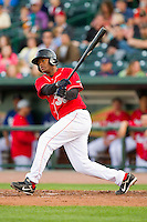 Dashenko Ricardo (38) of the Great Lakes Loons follows through on his swing against the Wisconsin Timber Rattlers at the Dow Diamond on May 4, 2013 in Midland, Michigan.  The Timber Rattlers defeated the Loons 6-4.  (Brian Westerholt/Four Seam Images)