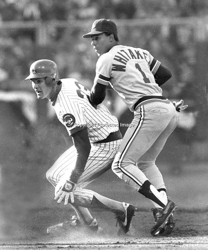 Chicago Cubs Ryne Sandberg with Detroit Tigers Lou Whitaker..during the 1984 All-Star game in S.F.<br />