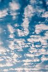 11.13.18 - Morning Sky.....