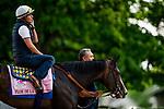 LOUISVILLE, KENTUCKY - MAY 01: Flor De La Mar prepares for the Kentucky Oaks at Churchill Downs in Louisville, Kentucky on May 01, 2019. Evers/Eclipse Sportswire/CSM