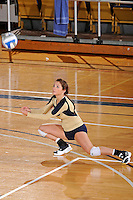 11 September 2011:  FIU defensive specialist Rachel Fernandez (5) warms up prior to the third set as the FIU Golden Panthers defeated the Florida A&M University Rattlers, 3-0 (25-10, 25-23, 26-24), at U.S Century Bank Arena in Miami, Florida.