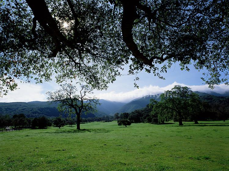 Santa Ynez Valley ranch   CALIFORNIA