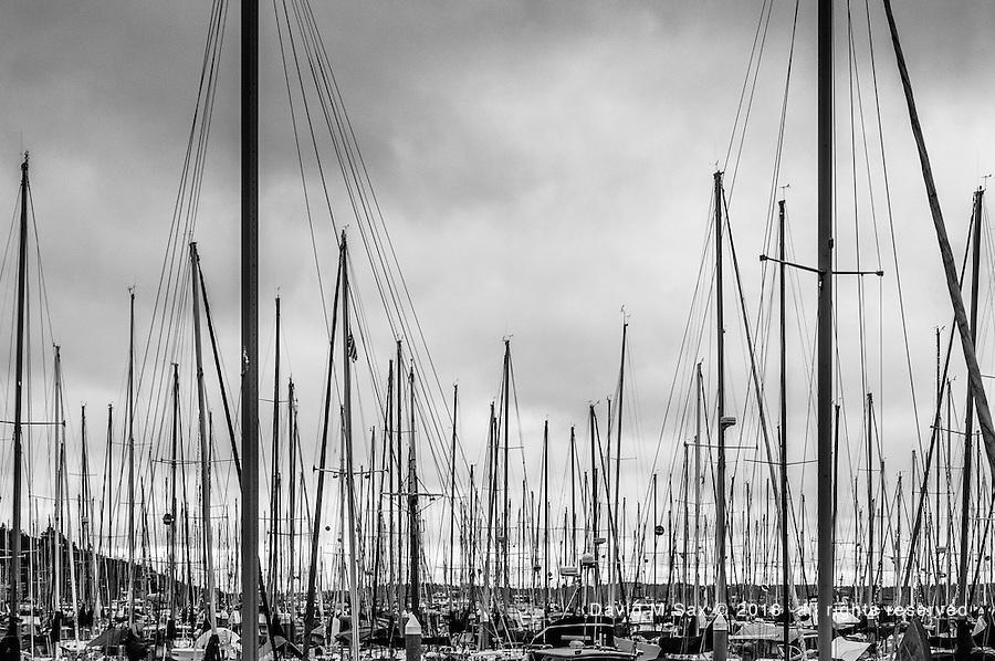 12.11.16 - Masts...