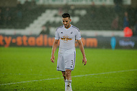 Sunday  14th   December 2014 <br /> Pictured: Neil Taylor of Swansea City weaves the pitch with his head down after the Swans lose 2-1 at home <br /> Re: Barclays Premier League Swansea City v Tottenham Hotspur  at the Liberty Stadium, Swansea, Wales,UK