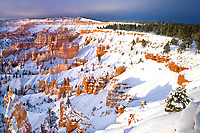 730750099 winter sunrise lights up the snow covered hoodoos a fir tree and the surrounding landscape in bryce canyon national park utah