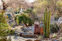 Palm Springs Art Museum Garden