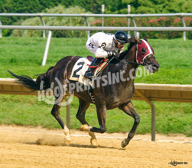 winning at Delaware Park on 8/11/16