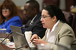 Nevada Assemblywoman Lesley Cohen, D-Henderson, works in committee at the Legislative Building in Carson City, Nev., on Thursday, May 9, 2013..Photo by Cathleen Allison