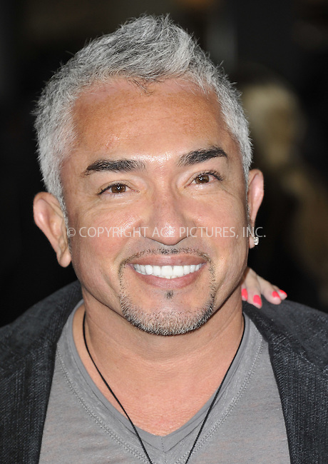 WWW.ACEPIXS.COM....February 5 2013, LA....Cesar Millan arriving at the 'Safe Haven' - Los Angeles Premiere at TCL Chinese Theatre on February 5, 2013 in Hollywood, California.....By Line: Peter West/ACE Pictures......ACE Pictures, Inc...tel: 646 769 0430..Email: info@acepixs.com..www.acepixs.com