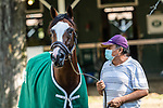 07252020:Tiz the Law works at Saratoga 2020 <br /> Robert Simmons/Eclipse Sportswire