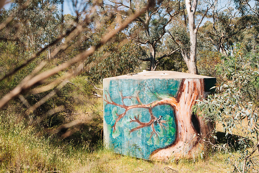 Image Ref: CA731<br />