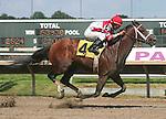 Philadelphia Park Stakes Racing 2009