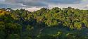 Lowland rainforest, Osa Peninsula, Costa Rica. May. Digitally stitched panorama.