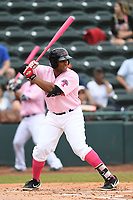 Hickory Crawdads first baseman Curtis Terry (29) awaits a pitch during the game with the Charleston Riverdogs at L.P. Frans Stadium on May 12, 2019 in Hickory, North Carolina.  The Riverdogs defeated the Crawdads 13-5. (Tracy Proffitt/Four Seam Images)