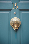 A teal door with a gold knocker of a horseshoe crab in Beacon Hill in Boston, MA.