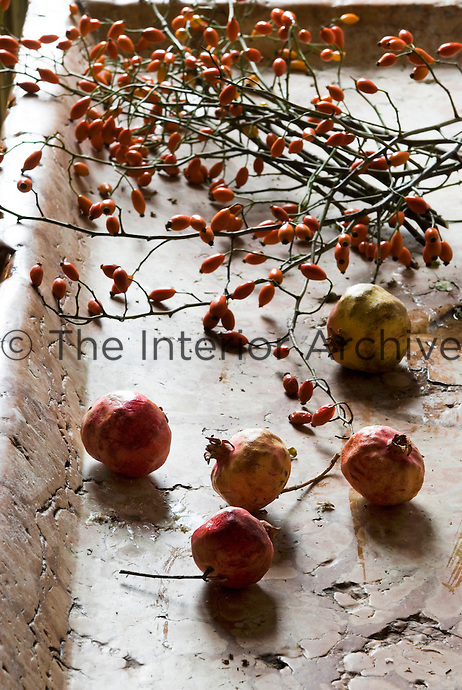 Close up of pomegranates and rose hips on the stone sink in the rustic kitchen
