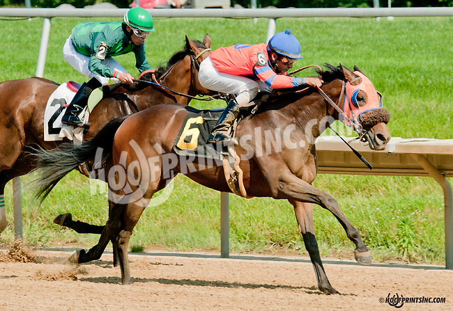 Royale Jacob winning at Delaware Park on 6/20/13