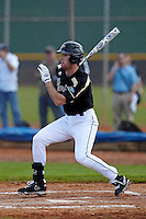 Purdue Boilermakers outfielder Angelo Cianfrocco #8 at bat during a game against the Connecticut Huskies at the Big Ten/Big East Challenge at Walter Fuller Complex on February 18, 2012 in St. Petersburg, Florida.  (Mike Janes/Four Seam Images)