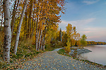 Idaho, North, Sandpoint. Evening light over the Pend Oreille Bay trail and Lake Pend Oreille in autumn.