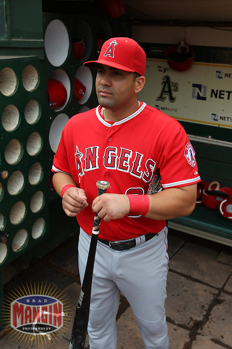 OAKLAND, CA - SEPTEMBER 5:  Kendrys Morales #8 of the Los Angeles Angels gets ready in the dugout before the game against the Oakland Athletics at O.co Coliseum on Wednesday, September 5, 2012 in Oakland, California. Photo by Brad Mangin