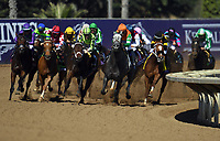 DEL MAR, CA - NOVEMBER 04: The pack rounds the turn during the Breeders' Cup Filly & Mare Sprint race on Day 2 of the 2017 Breeders' Cup World Championships at Del Mar Racing Club on November 4, 2017 in Del Mar, California. (Photo by Jamey Price/Eclipse Sportswire/Breeders Cup)