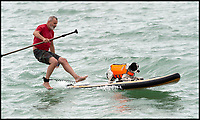 BNPS.co.uk (01202 558833)<br /> Pic:   RogerArbon/BNPS<br /> <br /> Doggy paddle anyone?<br /> <br /> Branksome Dene Chine beach in Bournemouth hosted the UK dog surfing championships today (Sunday).<br /> <br /> Competitors and their four-legged friends took to the water in a series of tightly contested heats, which culminated in a sprint finish across the sand.<br /> <br /> There were also prizes for the best dressed surfing dog.