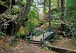 A Foot Bridge And Trail Through The Forest During Autumn In The Scenic Old Man's Cave State Park Of Central Ohio, Hocking Hills Region, USA