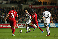 Pictured: Jonjo Shelvey of Swansea (2nd L) against Iago Aspas (3rd L) of Liverpool.<br /> Monday 16 September 2013<br /> Re: Barclay's Premier League, Swansea City FC v Liverpool at the Liberty Stadium, south Wales.