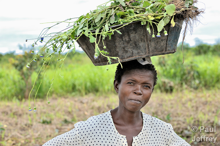 A woman walks along a road carrying vegetables on a military base near Kamina, in the Democratic Republic of the Congo.