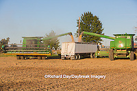 63801-07202 Farmer harvesting soybeans, Marion Co., IL