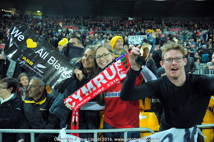Fans in the grandstand during the Steinlager Series rugby union match between the New Zealand All Blacks and Wales at Westpac Stadium, Wellington, New Zealand on Saturday, 18 June 2016. Photo: Dave Lintott / lintottphoto.co.nz