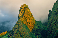 Iao Needle<br />