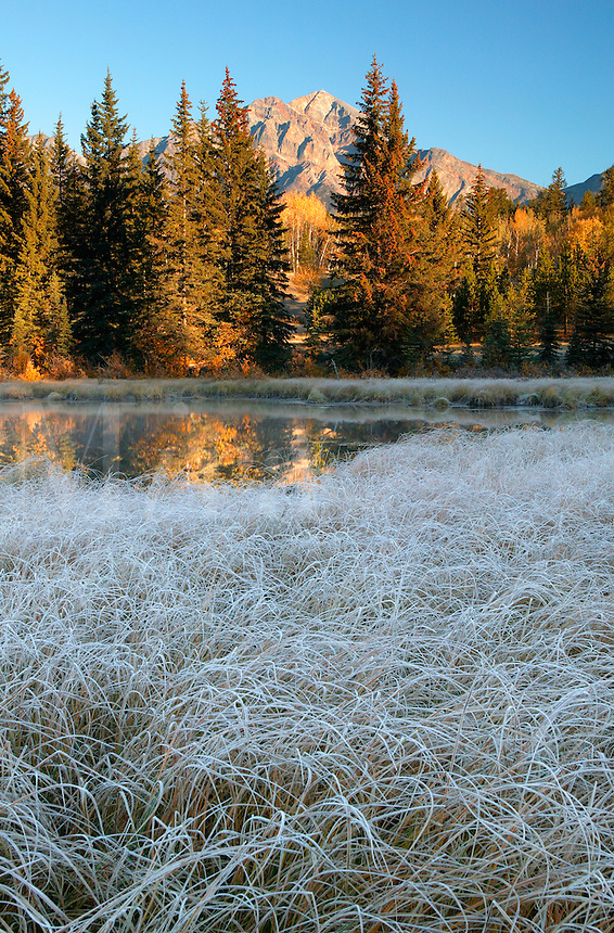 Frost on the ground at Cottonwood Slough with Pyramid Mountain in the background, Jasper National Park, Alberta, Canada.