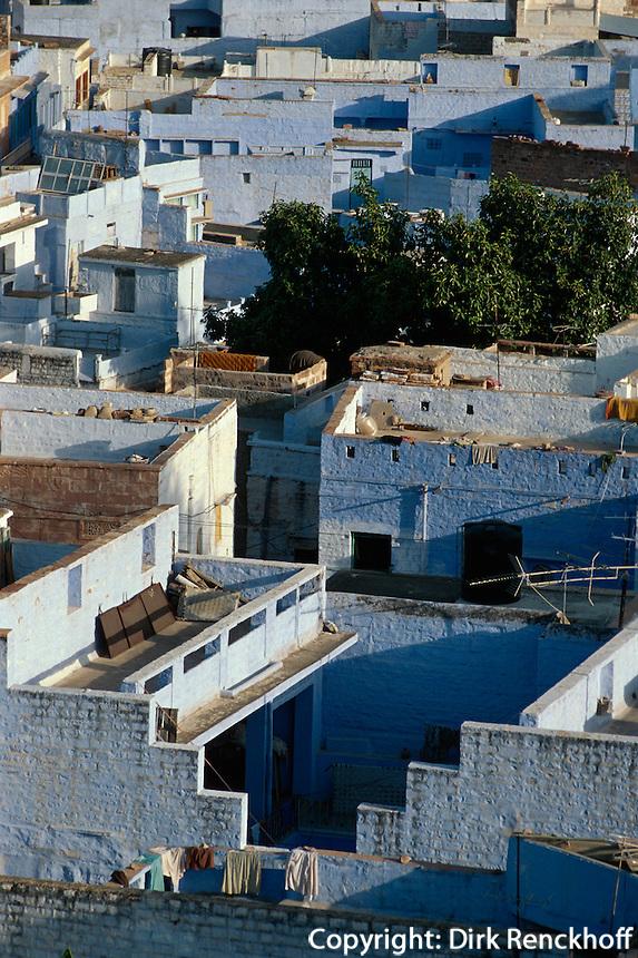blaue Häuser der Brahmanen in Jodhpur (Rajasthan), Indien