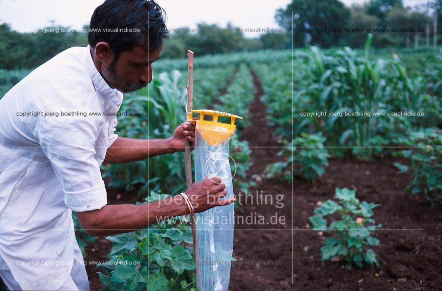 INDIA Madhya Pradesh , organic cotton project bioRe in Kasrawad  , farmer check a feromon trap for biological pest control of the bollworm / INDIEN Madhya Pradesh , Mitarbeiter der bioRe India begutachtet eine Feromonfalle zur biologischen Schaedlingsbekaempfung , Projekt fuer biodynamischen Anbau von Biobaumwolle in Kasrawad
