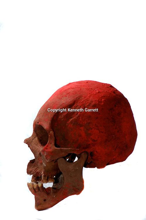 Maya rise and Fall, Copan, Honduras, Hunal Tomb materials, Tomb of Yax Kuk Mo, Skull of Yax Kuk Mo