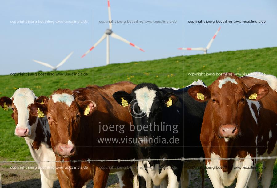 GERMANY Schleswig Holstein, Wind turbines and milk cows on pasture at farm / DEUTSCHLAND Schleswig Holstein, Milchkuehe auf einer Weide, Hintergrund Enercon Windraeder