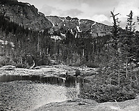 &quot;Drift Wood at the Mills&quot;,<br />