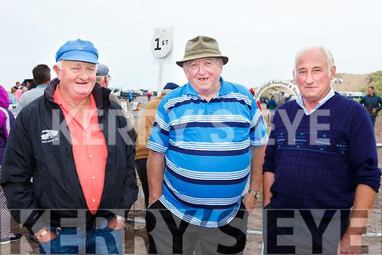 John O'Sullivan Lispole, Terry o'Connor Dingle and john Ryall Lispole at Glenbeigh races on Sunday