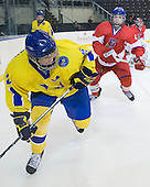 Calle Järnkrok (Sweden - 25), Oldrich Horak (Czech Republic - 4) - Sweden defeated the Czech Republic 4-2 at the Urban Plains Center in Fargo, North Dakota, on Saturday, April 18, 2009, in their final match of the 2009 World Under 18 Championship.