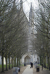 Looking along tree lined avenue leading to the entrance of Winchester Cathedral