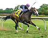 Yankee Wildcat winning at Delaware Park on 9/2/16