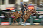 Lita Scott from Reno, Nev. races against the clock in the Barrel Racing event during the final night of Reno Rodeo on Saturday, June 28, 2014.<br /> (Photo By Kevin Clifford)