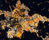 FRUCTOSE CRYSTALS - C6H1206<br /> 75x mag. Liquefied & recrystallized, polarized light