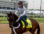 LOUISVILLE, KENTUCKY - APRIL 30: Tax, trained by Danny Gargan, exercises in preparation for the Kentucky Derby at Churchill Downs in Louisville, Kentucky on April 30, 2019. Scott Serio/Eclipse Sportswire/CSM
