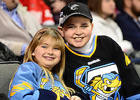 1/27/13 Bakersfield Condors at Toledo Walleye