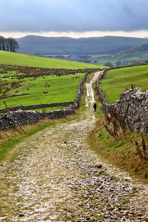 Lone Walker on Horton Scar Lane near Horton in Ribblesdale North Yorkshire England